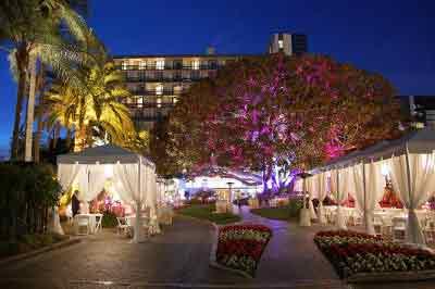 wedding venues, justice of the peace, santa monica, los angeles, wedding officiant