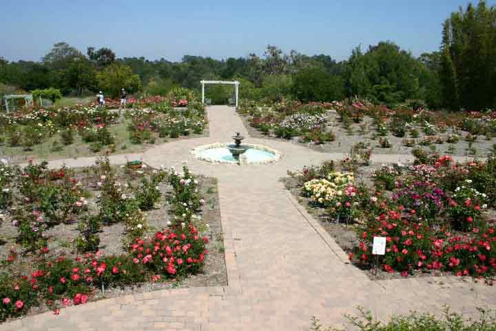South Coast Botanic Garden 1