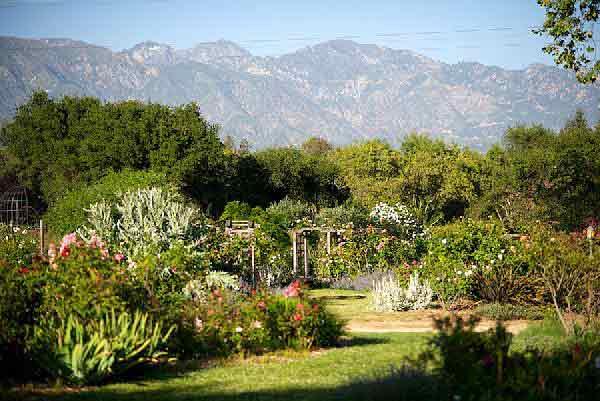 Descanso Gardens | Officiant Guy
