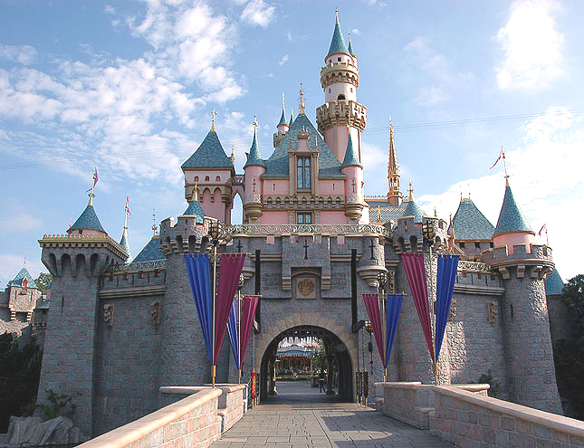 Can You Get Married at Disneyland
